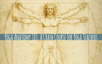 Yoga Anatomy Course 101: For Yoga Teachers