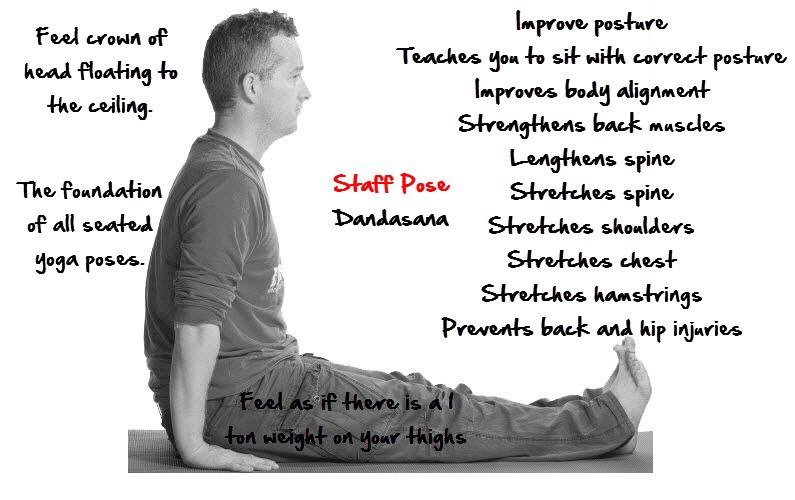 5 Steps To Teach Staff Pose | Dandasana