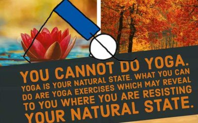 Yoga Quote: You Cannot Do Yoga
